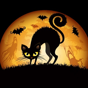 cartoon images of black cats and bats at night