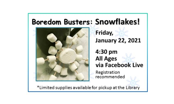 210122 Boredom Busters Snowflakes